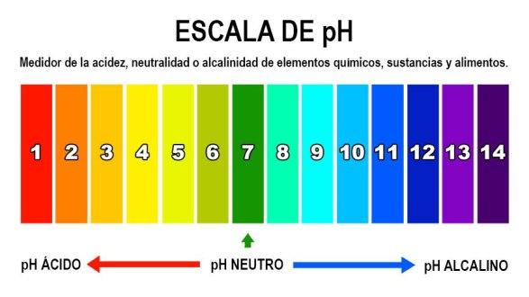 ¿Qué es el pH del agua y por qué es importante tenerlo en el nivel adecuado?